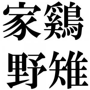 家鷄野雉の四字熟語-壁紙/画像