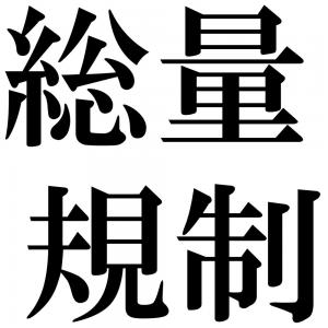 総量規制の四字熟語-壁紙/画像