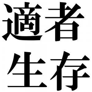 適者生存の四字熟語-壁紙/画像