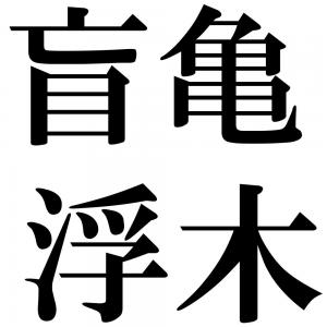 盲亀浮木の四字熟語-壁紙/画像