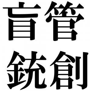 盲管銃創の四字熟語-壁紙/画像