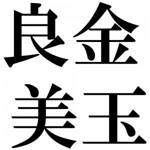 良金美玉の四字熟語-壁紙/画像